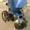 навесное оборудование к мотоблокам и мотокультиваторам #843535