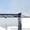 Продаем козловой кран специальный КС-50-42В,  г/п 50 тонн,  1993 г.в. #1011038