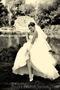 Весільний ФОТОГРАФ ВІДЕОГРАФ  - Изображение #4, Объявление #738385