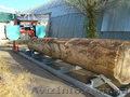порезка кругляка пилорамой дуб сосна